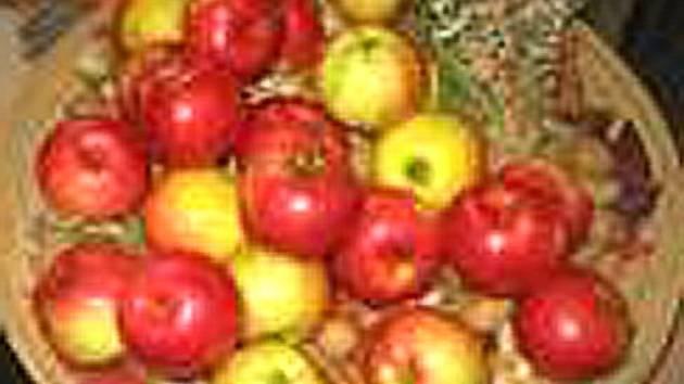 Zahrádkáři umějí vypěstovat jablka, na které je chuť už při pohledu.