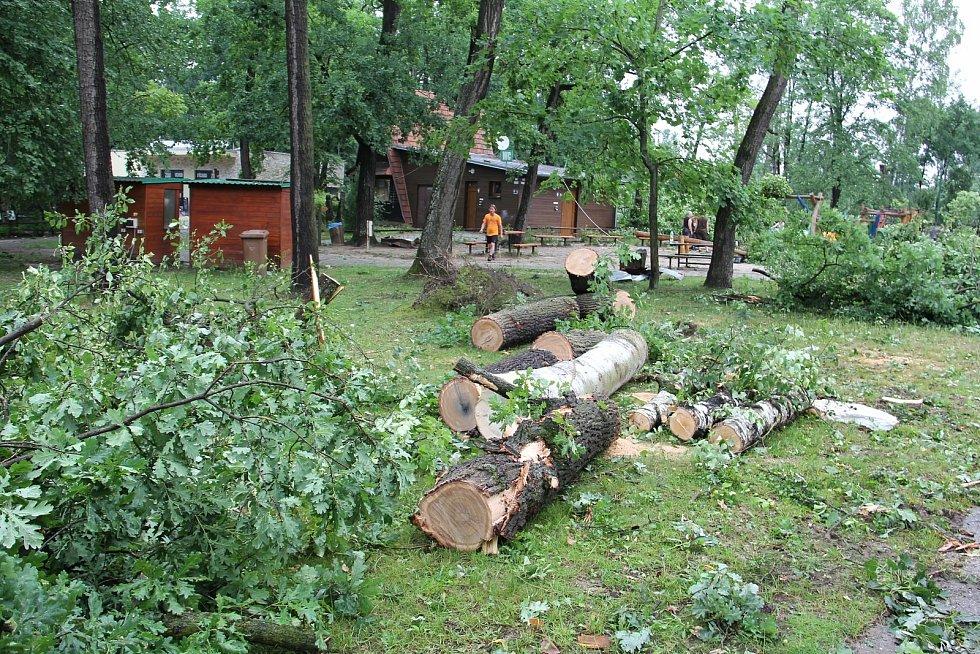 Hodonínskou zoo zasáhlo tornádo. V areálu sídlí i útulek pro psy, ten byl téměř kompletně zničený.