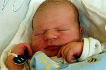 DOMINIČEK se narodil manželům Ireně a Zdeňkovi Baťovým z Domažlic v úterý 23. prosince přesně v poledne. Rodiče věděli, že se narodí klučina, tatínek si nenechal ujít okamžik, kdy přišel 4,20 kg vážící a 52 cm měřící syn na svět.