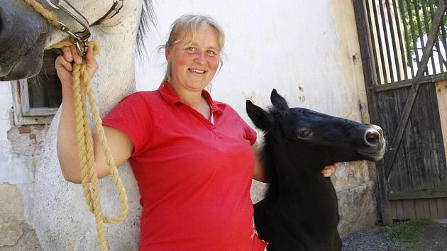 Jana Mathauserová se může chlubit dvěma klisnami a jedním čerstvým hřebečkem starokladrubského bělouše.