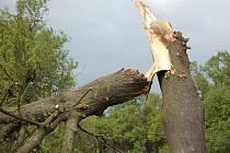 Hasiči odstraňovali rozlámané a padlé stromy.