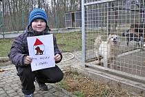 Den otevřených dveří v záchytné stanici psů na Valše.