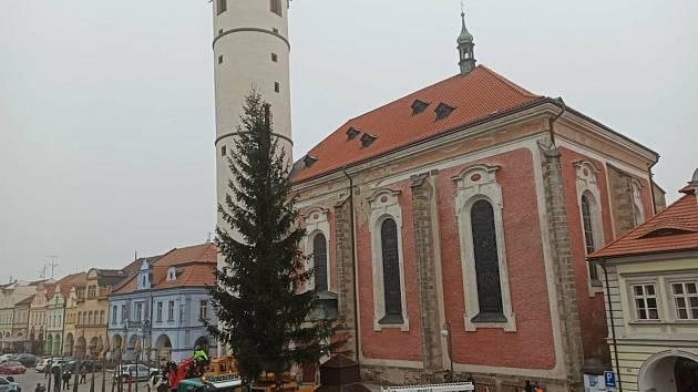 Vánoční smrk už stojí na náměstí na svém místě.
