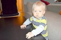 Martínek Švejnoch z Brnířova, první dítě narozené v roce 2015 v Plzeňském kraji, oslavil první narozeniny.