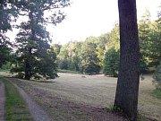 Zámecký park prochází postupnou obnovou.