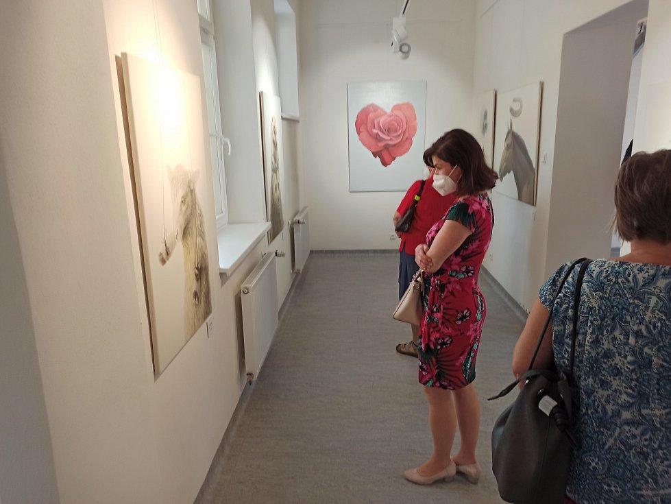 Nový začátek je výstava mladého talentovaného umělce Adama Jílka.