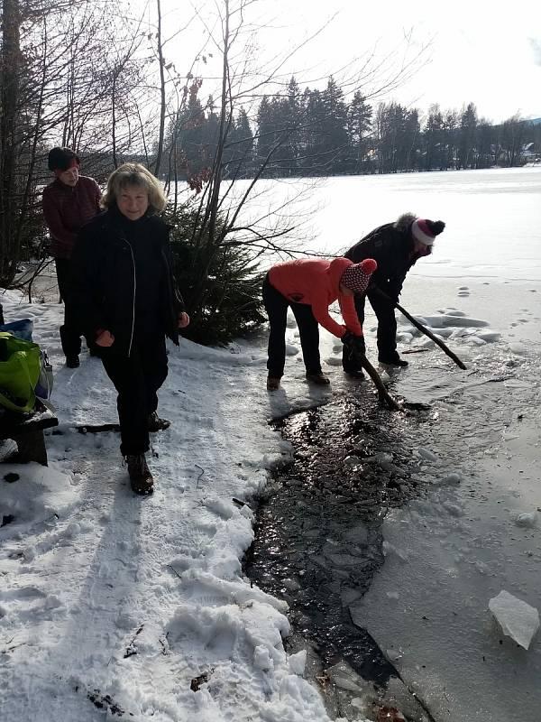 Chodky z ledu zahajují příští neděli další sezónu.