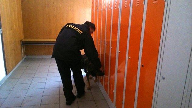 POLICEJNÍ PES ušatních skříněk označil přítomnost drog.