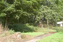 Část poběžovického zámeckého parku bude revitalizována v průběhu podzimu.