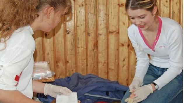 Na okresní kolo soutěže mladých zdravotníků se sjelo do Domažlic sedmnáct hlídek ze sedmi základních škol našeho regionu. Soutěžilo se ve dvou kategoriích a mezi hlavní úkoly patřilo poskytnutí první pomoci.