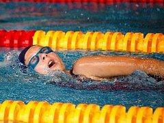 Plavání - ilustrační snímek.