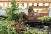 PÁR MINUT POTÉ. První obrázky z poničeného areálu letního kina svědčily o mimořádnosti nedělní bouřky.