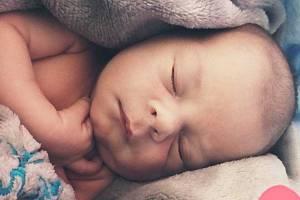 Josef Dussl z Dolního Metelska se narodil 7. února ve 02:16 v domažlické nemocnici s váhou 2 880 gramů a 49 centimetry. Maminka Dominika Bicanová a tatínek Josef Dussl předem věděli, že se jim narodí chlapeček a jméno dostal po tatínkovi