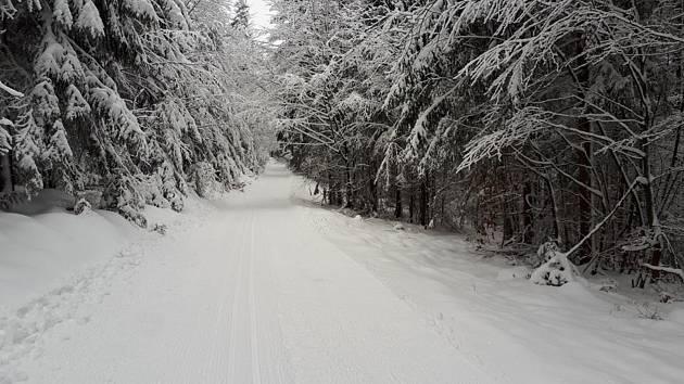 Znovu zasněžené stopy, které byly k mání během první poloviny prosince, si přejí lyžaři z Domažlicka.