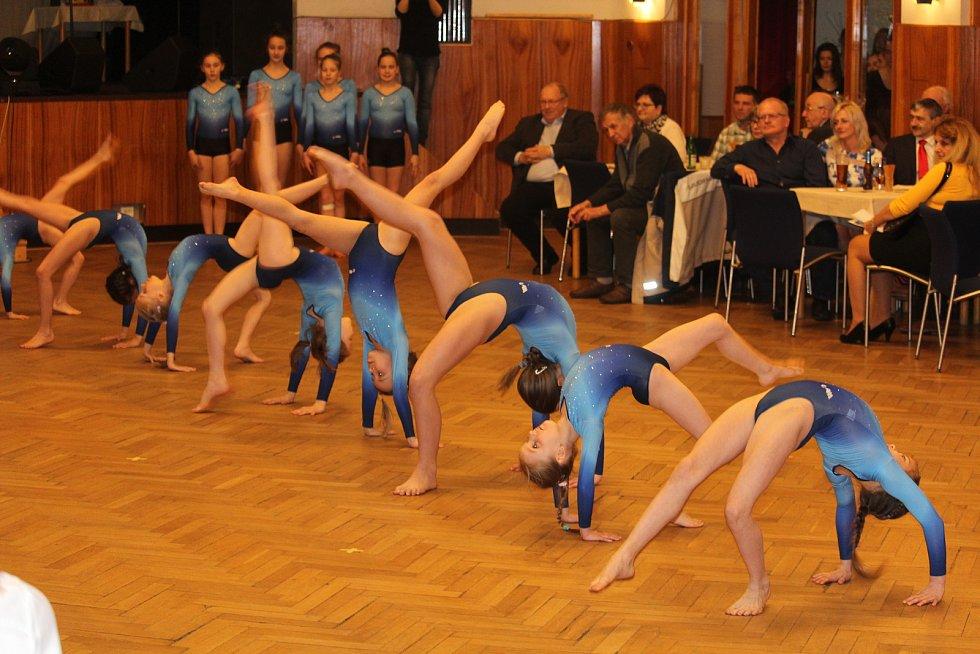 Své umění předvedly mladé sportovní gymnastky SG Sokol Domažlice.