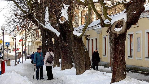 Ze známých domažlických Alejí zbyla jen jedna řada starých stromů. Radnice chystá jejich kompletní obnovu.