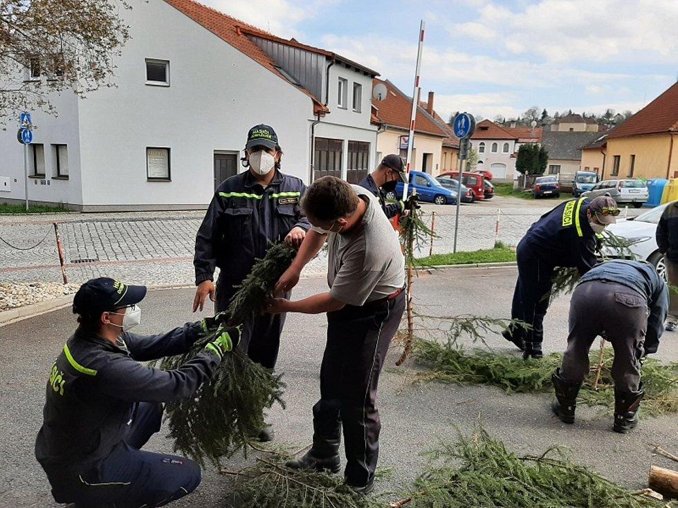 Dobrovolní hasiči z Domažlic letos opět navázali na tradici a postavili na náměstí májku.