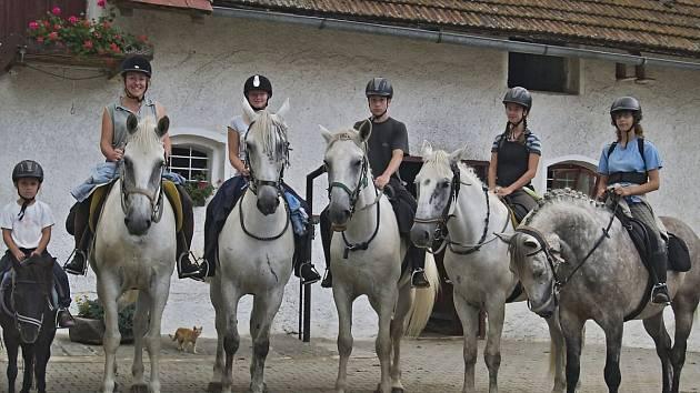 Kladrubští bělouši v Maškově mlýně.