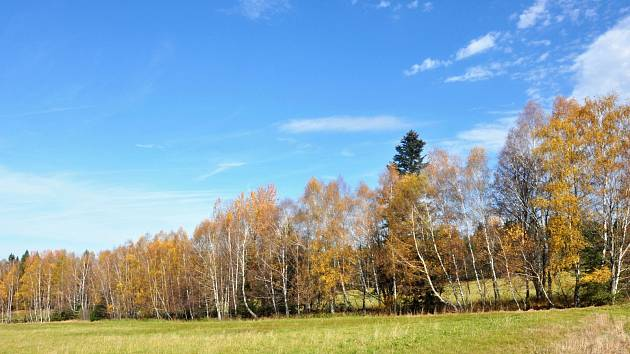 Krásy podzimu obrazem