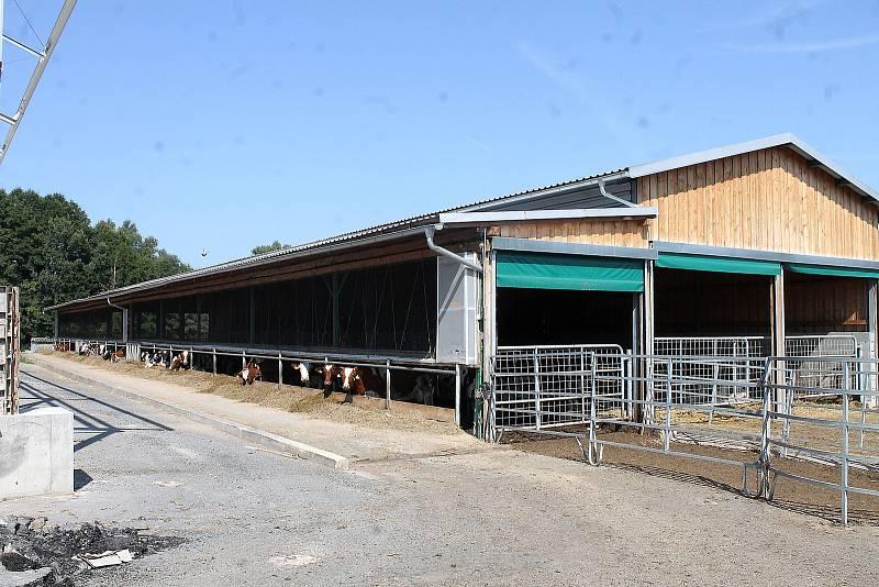 Dělníci staví nový kravín v Chodově, kam se vejde skoro 300 krav.