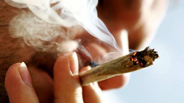 Marihuana - Ilustrační fotografie.