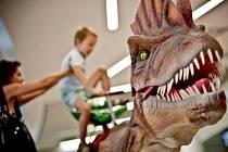 Říše dinosaurů v prostorách hradeckého obchodního centra Futurum.