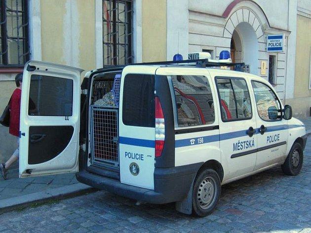 Odchytové vozidlo strážníků