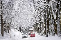 Zasněžená silnice v Orlických horách