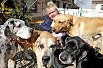Psi se pro Áju Charouzovou stali osudem.