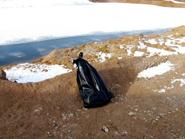 Sběr uhynulé labutě v Kosičkách.