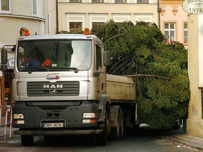 Stěhování hradeckého vánočního stromu