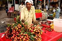 Prodejce liči v ulicích Indie, Dillí.