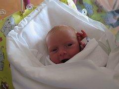 ANIČKA MRÁZOVÁ se narodila ve čtvrtek 30. dubna ve 22:19 hodin. Vážila 2400 gramů a měřila 44 centimetrů. Z miminka má ohromnou radost maminka Lucie a tatínek Petr z  Častolovic.