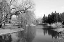 Šimkovy sady byly založeny v letech 1932–1935 z podnětu městské spořitelny dle regulačního plánu Josefa Gočára a návrhu Dr. Kamenického z Průhonic ve stylu anglického parku, pod názvem Herrmannovy sady, který obdržely na počest rodáka Ignáta Herrmanna.