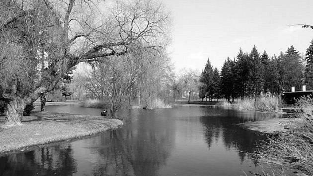 Šimkovy sady byly založeny vletech 1932–1935 zpodnětu městské spořitelny dle regulačního plánu Josefa Gočára a návrhu Dr. Kamenického zPrůhonic ve stylu anglického parku, pod názvem Herrmannovy sady, který obdržely na počest rodáka Ignáta Herrmanna.
