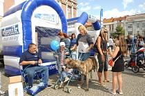 Den s Deníkem na Baťkově náměstí v Hradci Králové