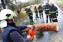 Práce hasičů při odklízení stromů.