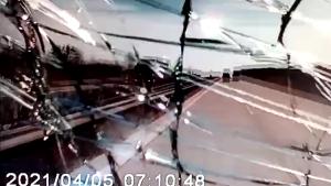 Záznam střetu s ptákem na D11 u Chlumce nad Cidlinou