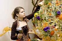 Z floristické soutěže