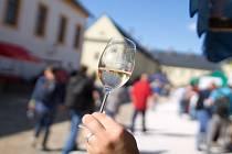 Při Vinobraní v Kuksu teklo po kaskádovém schodišti v barokním areálu v Kuksu víno.
