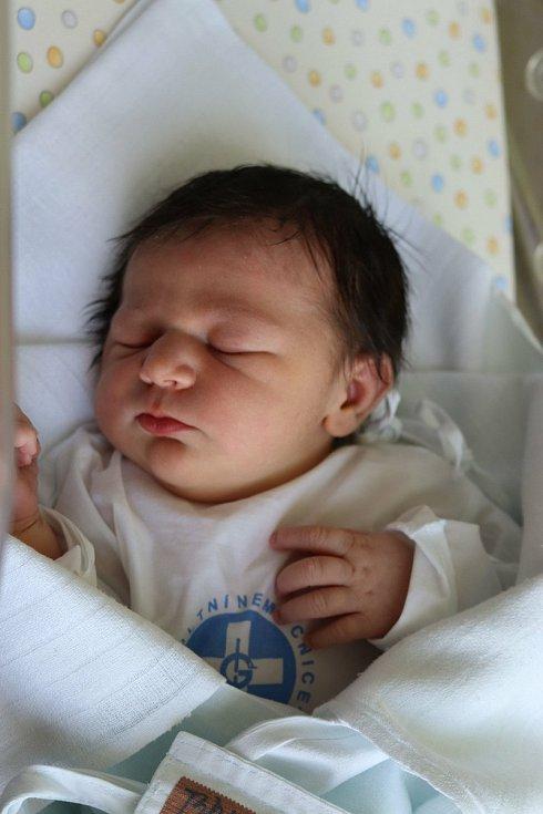 ELLA BARVÍŘOVÁ přišla na svět  21.července v 11.53 hodin a její prababička ji dostala ke svým narozeninám. Měřila 51 cm a vážila 3740 g. Velikou radost udělala svým rodičům Ivetě Pekárkové a Petru Barvířovi z Nového Bydžova. Doma se těší tříletý bráška Pé
