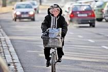 Zima v různých koutech města Hradec Králové.