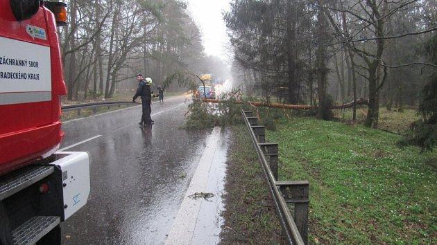 Spadlý strom na silnici I/35.