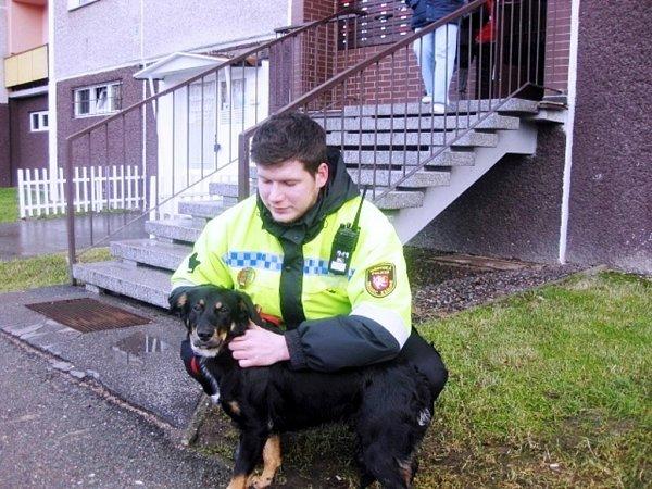 Strážníkem odchycený pes.