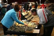 """Mezinárodní výstava minerálů v hradecké """"Střelnici"""" o víkendu 20. - 21. března 2010."""