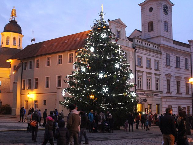 Hradecké vánoční stromy v sobotu rozzářily město. Stromky a další vánoční výzdoba budou město krášlit až do 6. ledna.