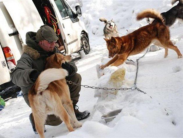V Deštném startuje patnáctý ročník extrémního závodu psích spřežení