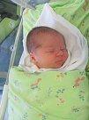 TEODOR KUČERA poprvé vykoukl na svět 23. ledna v 15.36 hodin. Po porodu vážil 4010 g. Velice svým příchodem na svět potěšil rodiče Anetu Šrajerovou a Zdeňka Kučeru z Hradce Králové.