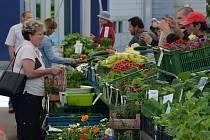 TRŽNICE, kde koupíte čerstvou zeleninu, sazenice a další produkty, si lidé během sezóny vždy oblíbí.