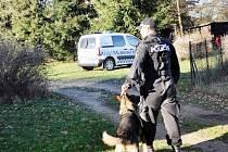 Hlídkující strážník městské policie se psem.
